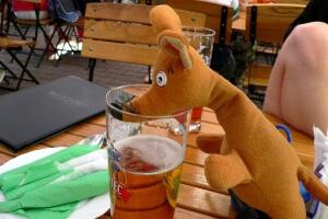 Ryjek w Rabce Zdrój na piwie
