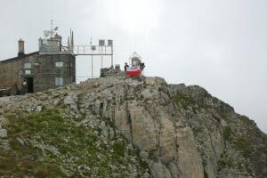 Ryjek na szczycie Musała 2925 m n.p.m. w Bułgarii