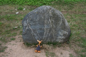 Ryjek na najwyższym szczycie Litwy