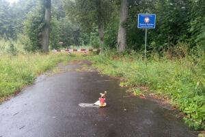 Ryjek na granicy z obwodem kaliningradzkim