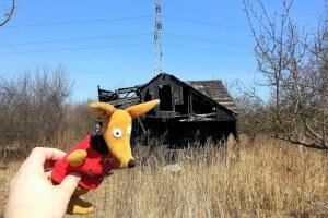Spalony dom na Stokach