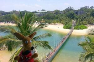 Ryjek i most Sentosa - Palaw Island