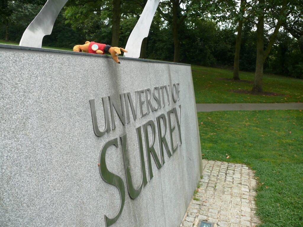 Ryjek w University of Surrey