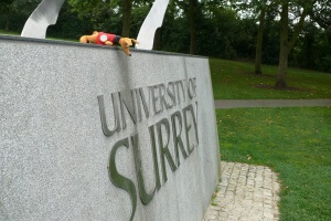 Ryjek w University of Surrey