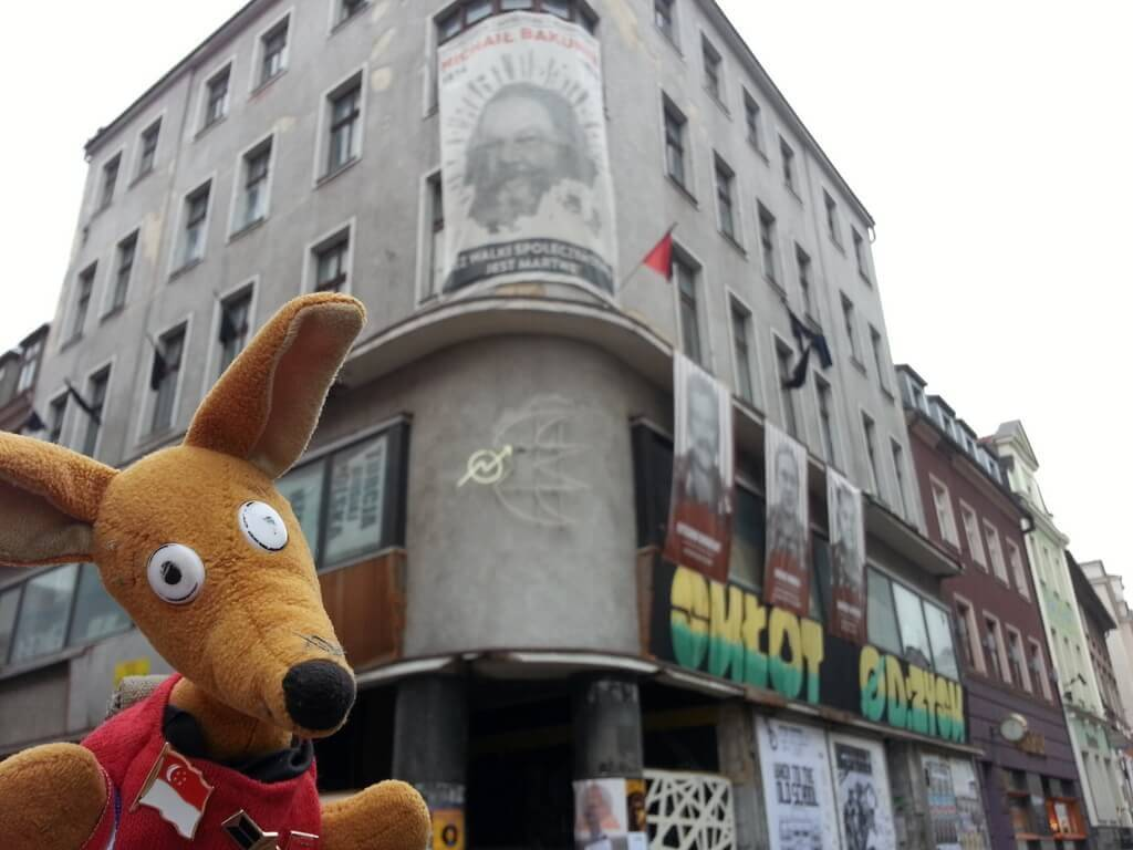 Ryjek i największy poznański squat