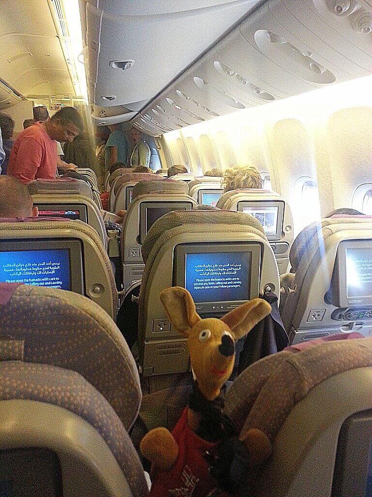 Ryjek po lądowaniu w Dubaju