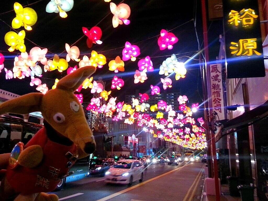 Ryjek i lampiony w Chinatown (SG)